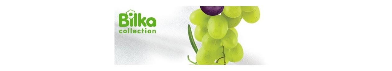 Bioactiv-Ingrijirea mainilor